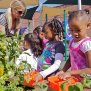 Elementary school children learning about gardening.