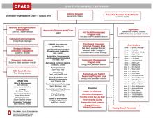 Extension Organizational Chart